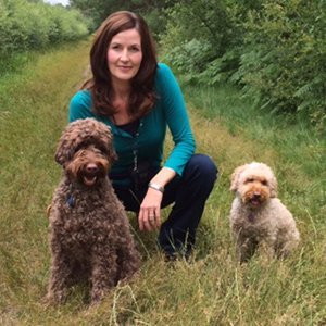 Isabelle Adams-Papé - Dog trainer / Puppy trainer - Ringwood, Hampshire