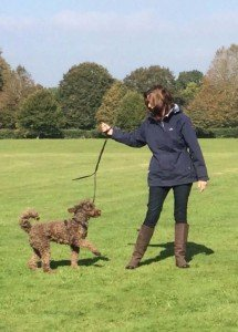 Isabelle Adams-Papé, Dog Trainer, Ringwood Dogs, Ashley Heath, Ringwood, Hampshire