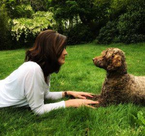 Ringwood Dogs, Dog Training, Dog Boarding, Dog Daycare